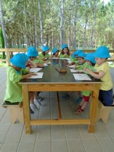 visita final do ano jardim de infância mundo das tropelias